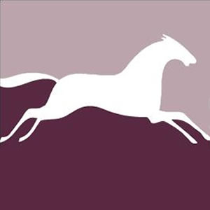 White Horse team icon