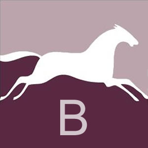 White Horse B team icon